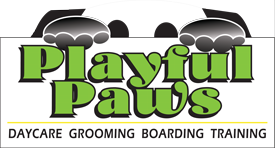 Logo for Playful Paws in Weston WI